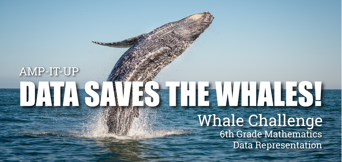 Data saved the Whales - Whale jumping out of the water